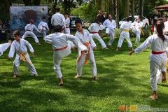Karate2018-(52)