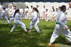 Karate2018-(69)