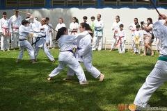 Karate2018-(70)