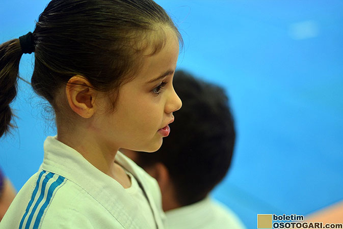 judo_pocket_competition_2017-138