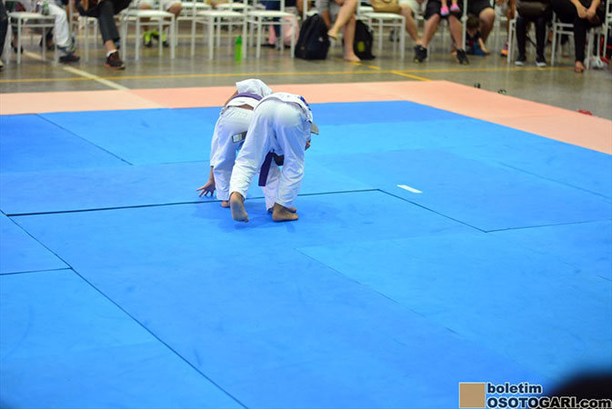 judo_pocket_competition_2017-157