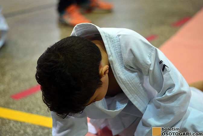 judo_pocket_competition_2017-182