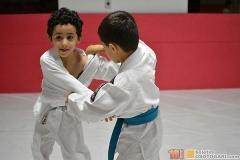 JudoPocketIntegration2018-(104)