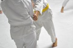JudoPocketIntegration2018-(298)