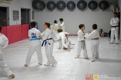 JudoPocketIntegration2018-(319)
