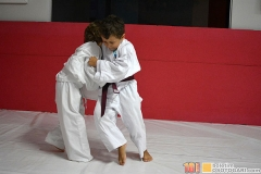 JudoPocketIntegration2018-(98)