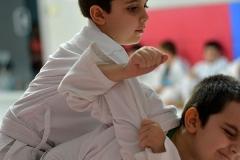 JudoCountryClub-(239)