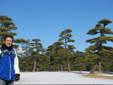 img_5775-_jardim_-castelo-em-tokyo